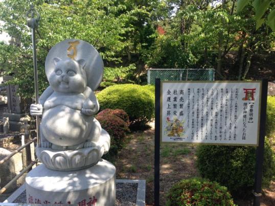 Tanuki Buddha Statue