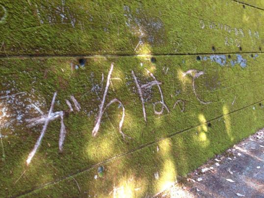Encouraging words in moss